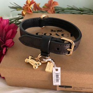 NEW💥COACH Signature Coated Leather Sm Dog Collar